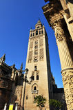 The cathedral of Seville, Giralda tower, Andalusia, Spain Royalty Free Stock Images