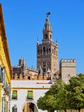 Cathedral in Seville, Spain. Santa Maria de la Sede Cathedral in Seville, Andalusia, Spain Royalty Free Stock Images