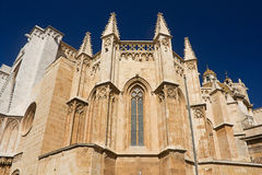 The cathedral in Spain town. Stock Photography