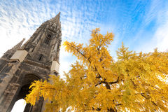 Cathedral Spire Behind Tree Royalty Free Stock Photo
