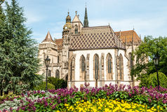 Cathedral of St. Elizabeth with garden Stock Images
