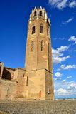 The Cathedral of St. Mary of La Seu Vella Stock Images