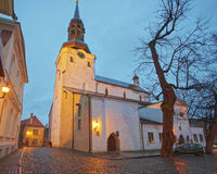 Cathedral of St Mary the Virgin or Dome Cathedral in the Toompea Stock Photography