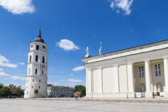 Cathedral of St. Stanislaus. Vilnius Stock Photos