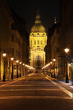 Cathedral of St. Stephen in Budapest. Hungary Royalty Free Stock Photo