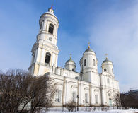 Cathedral of St. Vladimir Stock Images