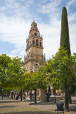 Cathedral tower from the Mezquita, Cordoba, Spain. Cathedral tower of the Mezquita, Cordoba, Spain overlooking the orange trees of the Patio de los Naranjos Royalty Free Stock Photography