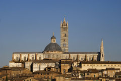 Cathedral and tower in Siena Stock Photography