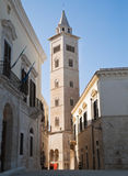 The Cathedral of Trani. Apulia. Royalty Free Stock Image