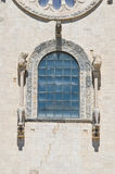 Cathedral of Trani. Puglia. Italy. Royalty Free Stock Photography