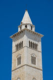 Cathedral of Trani. Puglia. Italy. Stock Images
