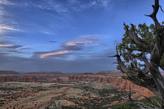 Cathedral Valley Overlook Stock Photos