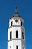 The Cathedral of Vilnius Stock Images