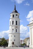 Cathedral of Vilnius Stock Image