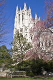 Cathedral(Washington National) Royalty Free Stock Photo