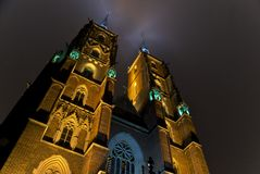 Cathedral in Wroc�aw by night Stock Image