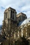 cathedrale κυρία de Γαλλία notre Παρίσι Στοκ Εικόνα