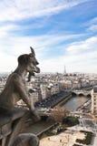 cathedrale dame de gargoyle noirenotre paris Arkivbilder
