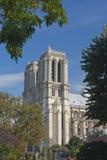 cathedrale dame de notre Стоковое Фото