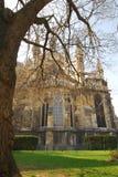 Cathedrale Notre Dame Imagem de Stock
