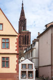 Cathedrale Notre Dame de Strasbourg Stock Images