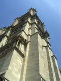 cathedraledamenotre Arkivfoto