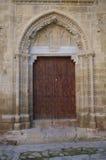 Cathedreal dörr Royaltyfria Bilder