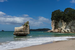 Cathedrol Cove beach Royalty Free Stock Photos