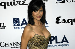 Catherine Bell on the red carpet. Royalty Free Stock Images