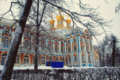 Catherine Palace i vinter, St Petersburg Royaltyfria Bilder