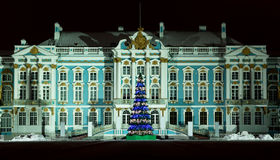 Catherine Palace in winter night, Russia. Catherine Palace located in the town of Tsarskoye Selo (Pushkin), in winter night with Christmas-tree Royalty Free Stock Photo