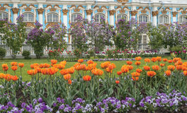 Catherine Park. Flowering in Catherine Park in Tsarskoe Selo (Pushkin) near St. Petersburg, Russia stock images