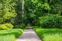 Catherine Park in Pushkin stock photo