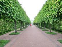 Catherine Park, Tsarskoye Selo Catherine Palace in Rusland, St. Petersburg, door toeristen die over de hele wereld wordt bezocht  royalty-vrije stock afbeeldingen