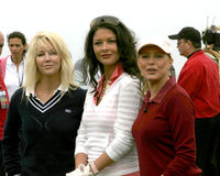 Catherine Zeta-Jones, Cheryl Ladd, Heidekraut Locklear, Michael Douglas stockbild