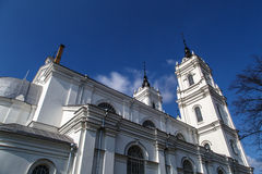 Catholic Cathedral in Ludza Stock Images