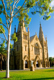 Catholic church. A beautiful sand stone historical catholic church  with landscaping of palm and gum trees Royalty Free Stock Photography