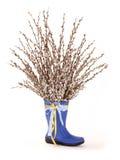 Catkien in blauwe schoe van mum Stock Fotografie
