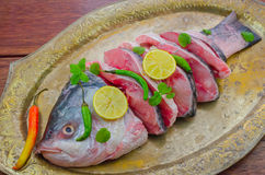 Catla fish on an old silver platter. Stock Photography