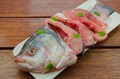Catla fish Stock Photography