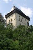 catle δάση πύργων Στοκ φωτογραφίες με δικαίωμα ελεύθερης χρήσης