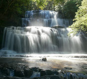 catlins森林海岛新的公园purakaunui南瀑布西兰 库存照片