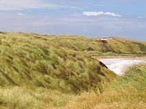 Catlins wybrzeże - Nowa Zelandia zdjęcie royalty free
