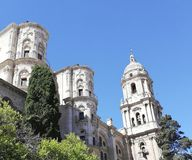 Catolic-Kathedrale mit natürlichem Laub lizenzfreies stockfoto
