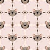 Catpattern Stockbilder
