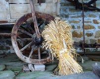 Catr e cereale Fotografie Stock Libere da Diritti