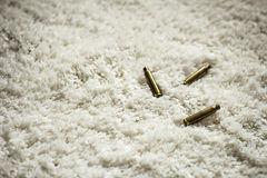 Catridges en la alfombra blanca fotografía de archivo libre de regalías