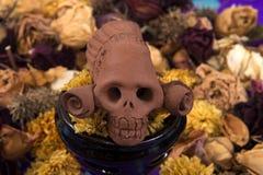 Catrina, cráneo Foto de archivo