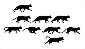 Cats. Set of silhouettes of cats, useful for any kinds of design, posters and cards Royalty Free Stock Photo