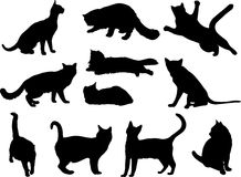 Cats a. Big cat silhouette collection. Vector Illustration Stock Images
